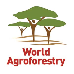 world-agroforesty