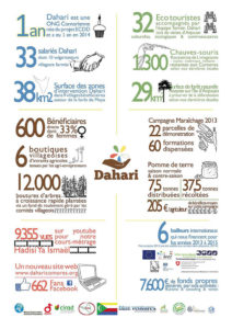 Infographie-Dahari-2013