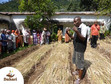 Journée ouverte au CRDE de Salamani à la découverte de techniques agricoles améliorées